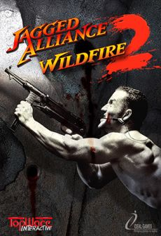 free steam game Jagged Alliance 2 - Wildfire