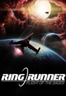 free steam game Ring Runner: Flight of the Sages
