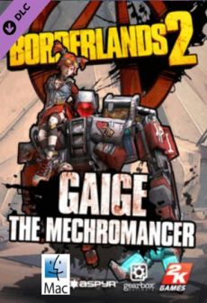 free steam game Borderlands 2 - Mechromancer Pack