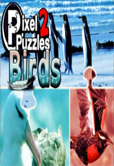free steam game Pixel Puzzles 2: Birds
