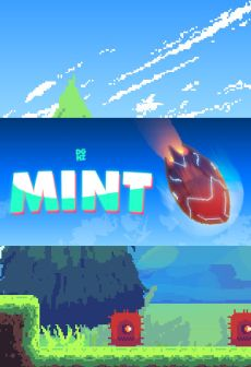 Mint Steam Key PC