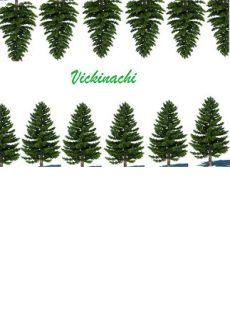 Vickinachi