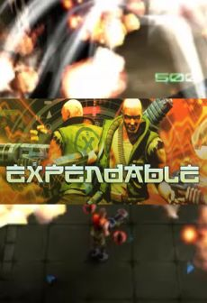 free steam game Expendable