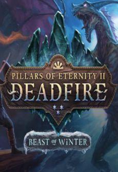 Pillars of Eternity II: Deadfire - Beast of Winter
